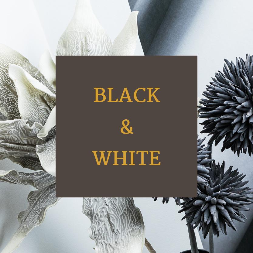 Freizeittempel Zimmer Black and White 1
