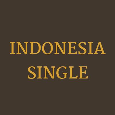 Freizeittempel Zimmer Indonesia Single 6